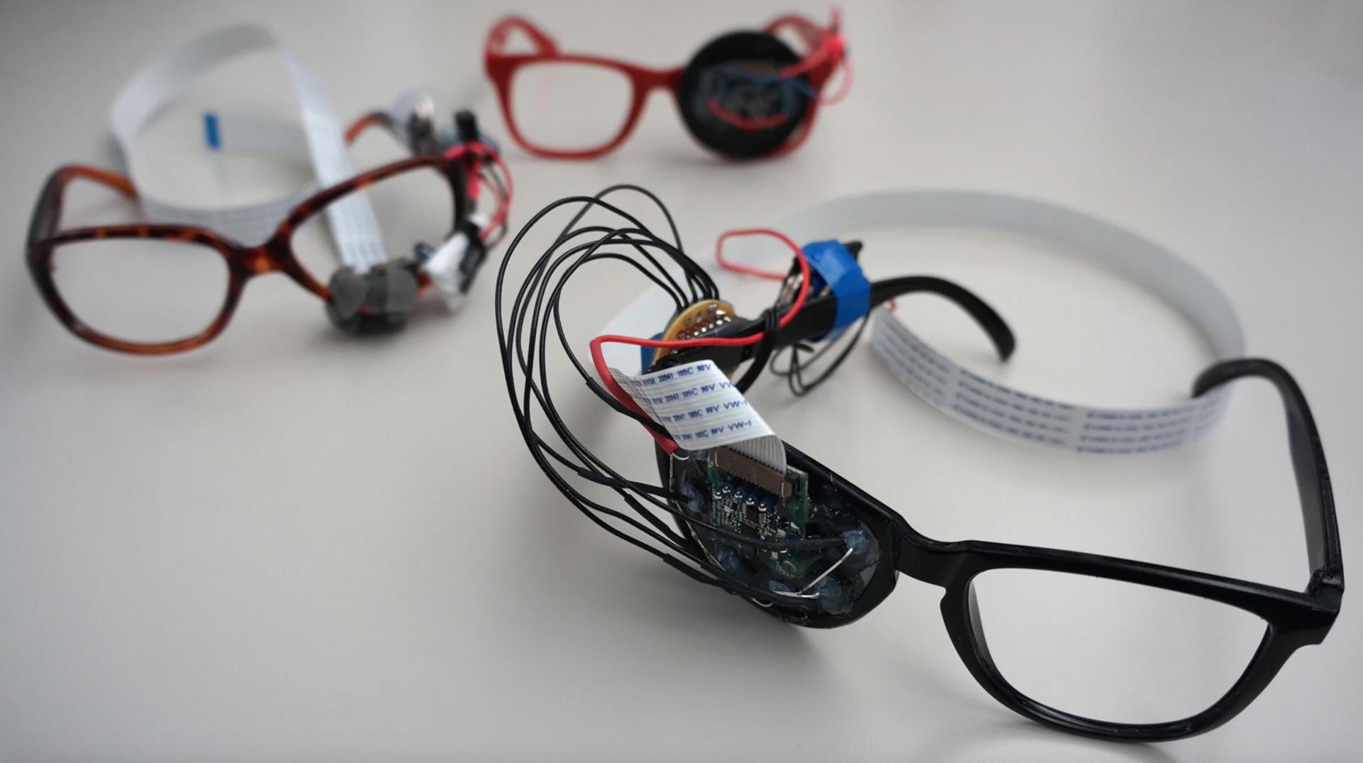 Rambus, Lensless Smart Sensor (frog) – yusthaus